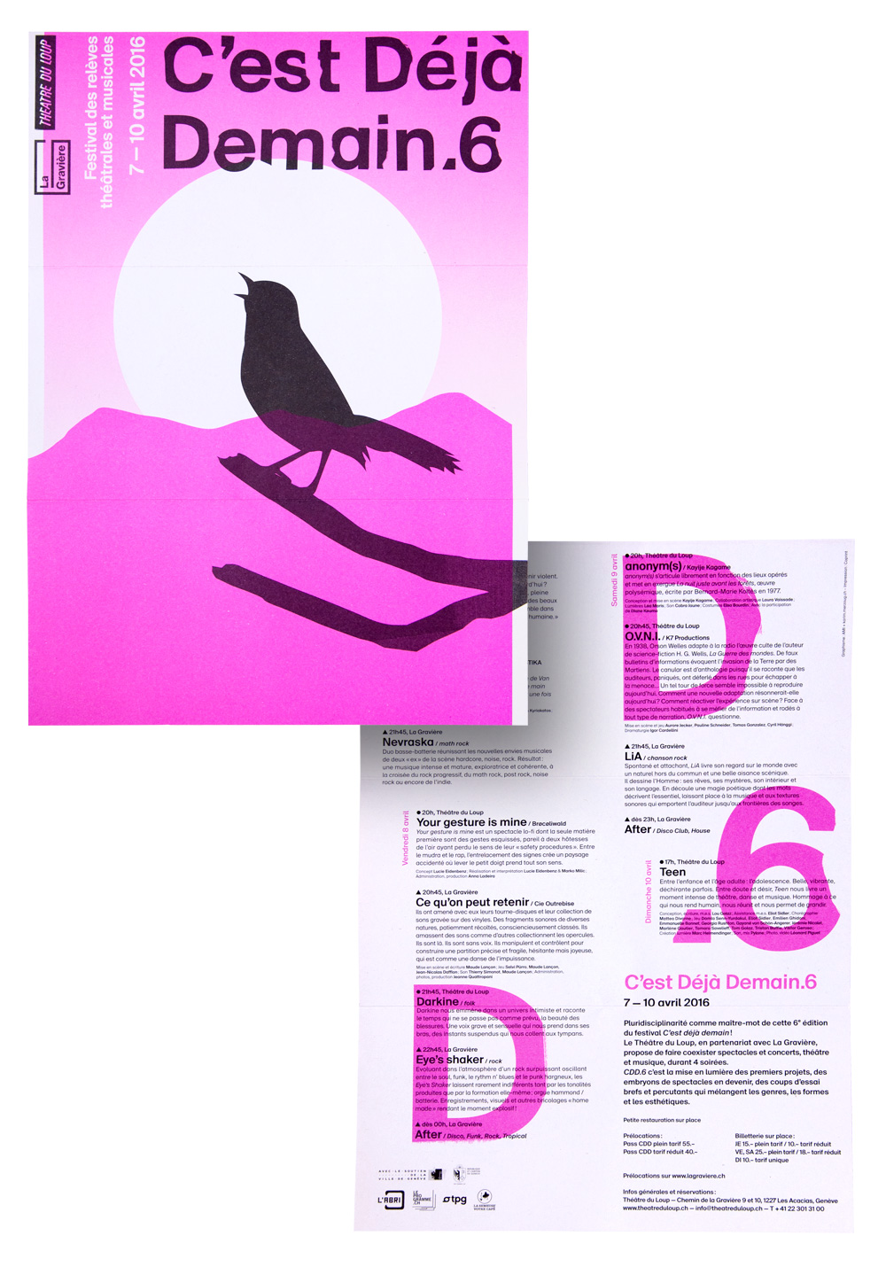 AMI-loup-cdd6-flyer