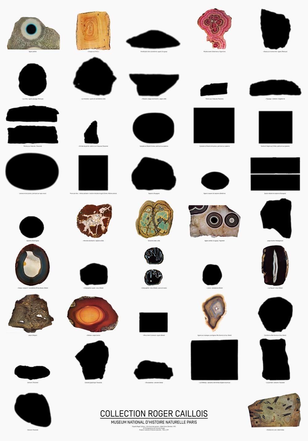 AMI-roger-caillois